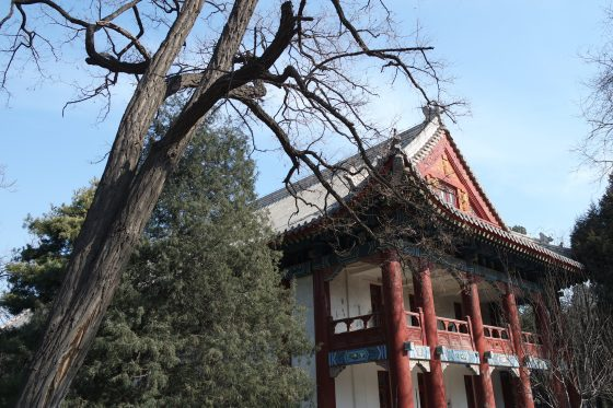 Pre-departure Tips: Peking University Spring