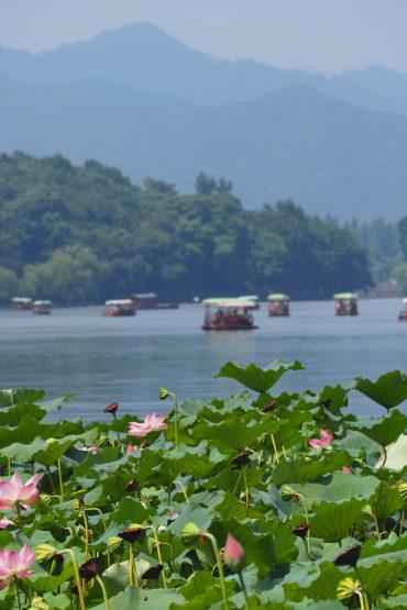 7 Days: Hangzhou-Xitang-Shanghai